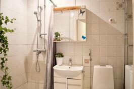 Kylpyhuone, jossa pesukoneliitäntä
