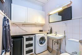 Wc-tilassa on myös hyvin tilaa kodinhuollolle.