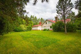Suojaisella takapihalla runsaasti nurmikkoa