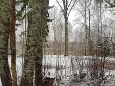 Puutarhasta pilkottaa kauniisti Saimaa