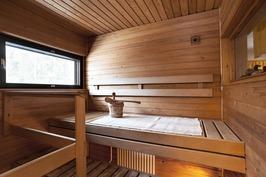 Tilavassa saunassa myös ikkuna