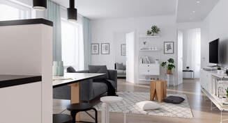Visualisointikuva asunnosta