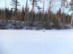 Tontti talvella jäältäpäin katsottuna