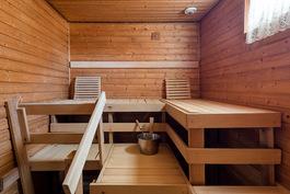 Reilun kokoinen sauna