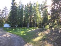 Metsää takaa