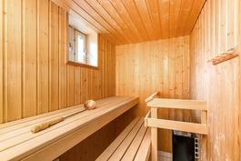 Tilava ikkunallinen sauna.