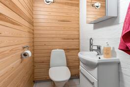 Kellarikerroksen wc.