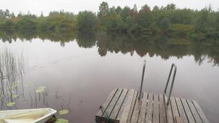 Kirkasvetinen Livo-joki
