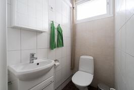 Erillinen wc on myös pintaremontoitu