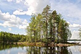 Kiinteistöön kuuluu oma n. 600 m2 saari, johon pääsee laituria pitkin.