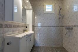 Yläkerran kylpyhuone, wc