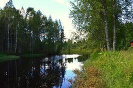 Joki kesällä
