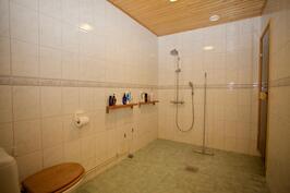 Kylpyhuone, jossa WC
