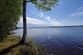 Iso ja kaunis Kuuhankavesi. Kesällä uinti, kalastus, virkistys. Talvella ulkoilu, hiihto, kalastus.