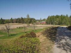 Pihan vieressä peltoa jossa voi hyvin pienviljelyä harrastaa