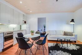 kaksion keittiö / olohuone