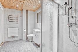 2008 remontoitu kylpyhuone