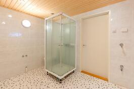 Pesuhuoneessa suihkukaapin vieressä wc-pönttö
