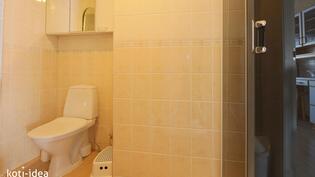 Erillinen WC jossa suihkukaappi II