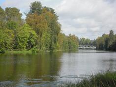 Näkymä laiturilta joelle
