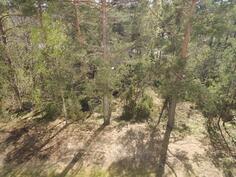 Parvekkeelta näkymät metsän puolelle