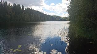 Alainen Vaherijärvi