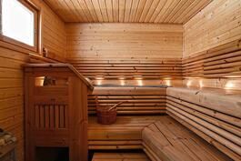Näyttävä, ikkunallinen sauna/ Fin bastu med fönster.