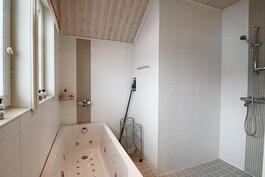 Yläkerran kylpyhuone poreamme