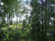 Näkymiä järvelle