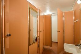 Kellarikerroksen wc/suihkutila