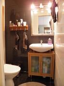 Erillinen wc-tila, remontoitu 2013