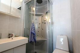 ja höyrysuihkukaapilla varustettu kylpyhuone-wc