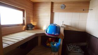 Ikkunallinen sauna puukiukaalla
