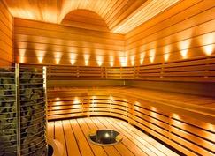 sauna löylytila