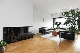 Tilava ja valoisa olohuone sopii myös edustuskäytt
