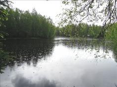 Sanginjoki kuvattuna mökin pihalta
