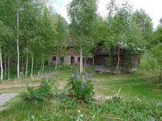 Pihapiirä, jossa navetta ja aittarakennus