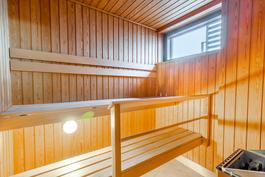 Uuden veroinen sauna