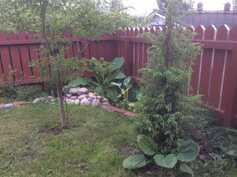 Asukkaan kuva puutarhasta