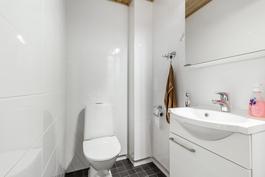 Erillinen wc eteisessä / Separata wc i hallen