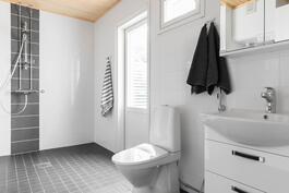 Kylpyhuone, jossa suihku, wc-istuin ja allas kaappeineen