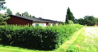 Talo pellon laidalla pensasaidan suojassa