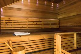 Tunnelmallinen sauna tervaleppäpaneelein