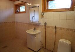WC- tila, suihkutilaa taustalla