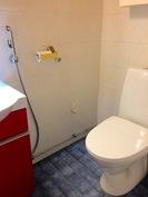 Alakerran WC (kuva 2)