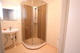 Remontoitu kylpyhuone, jossa suihkukaappi