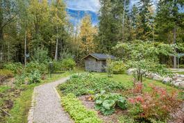 Puutarhassa satoja kasveja, mm vihannesmaa. Lato kuuluu kauppaan.