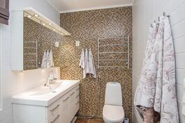 Yläkerran kylpyhuonetta, missä suihkukaappi ja poreamme