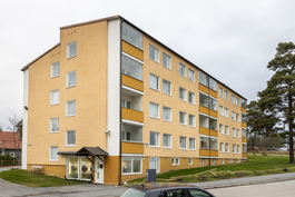 Julkisivu - Tontilla uusi aita!