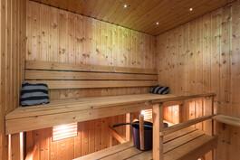 Sauna (sähkö)